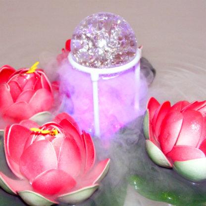 Декоративный цветок лотоса